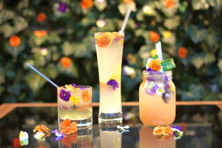 atelier evjf cours de cocktail amsterdam