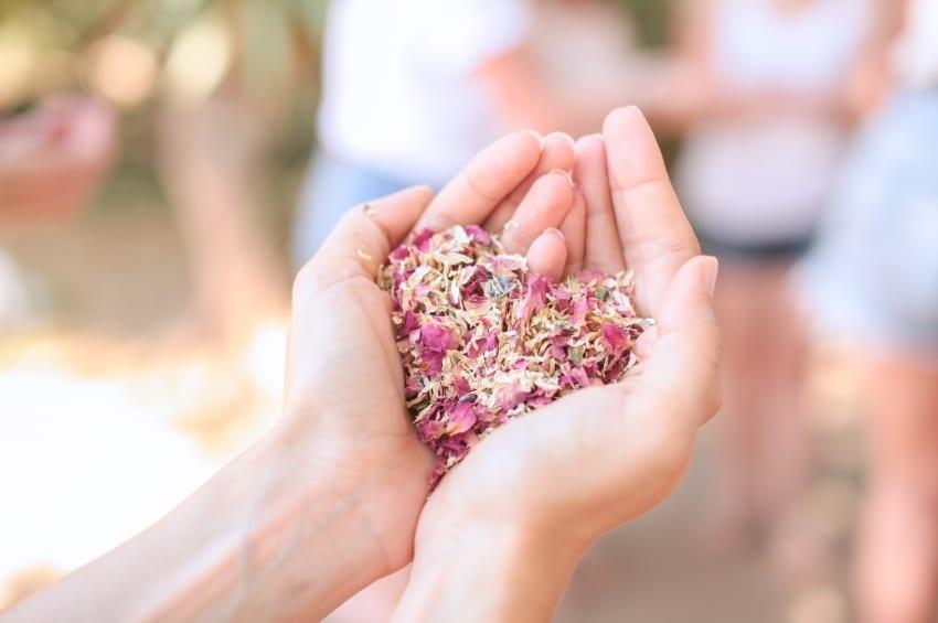petales de fleurs sechees confettis en forme de coeur dans le creux des mains dune femme