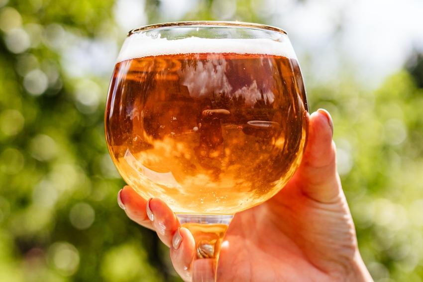 degustation de biere pour un evjf a lille
