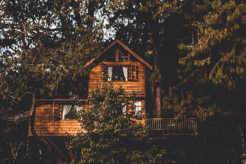 jolie cabane dans les arbres