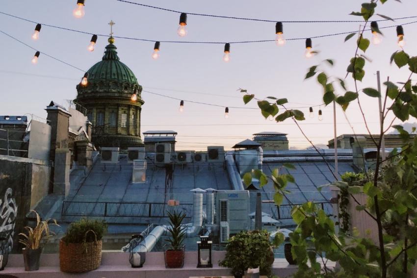 rooftop avec plantes et guirlandes electriques