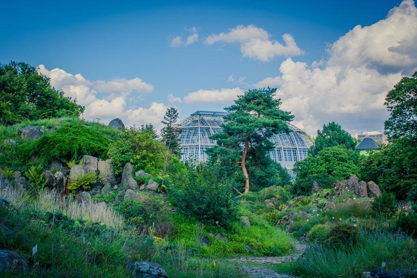 jardin botanique et grande verriere