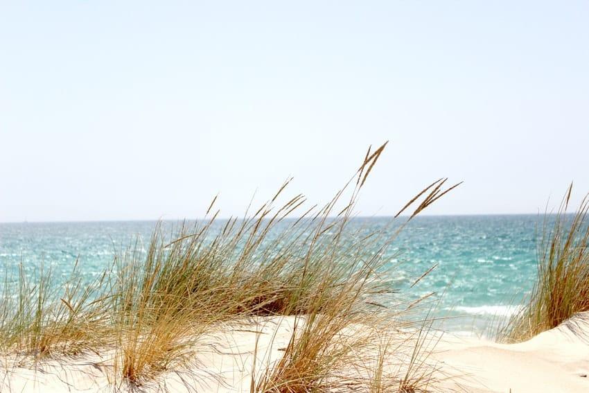 dune de sable face a la mer
