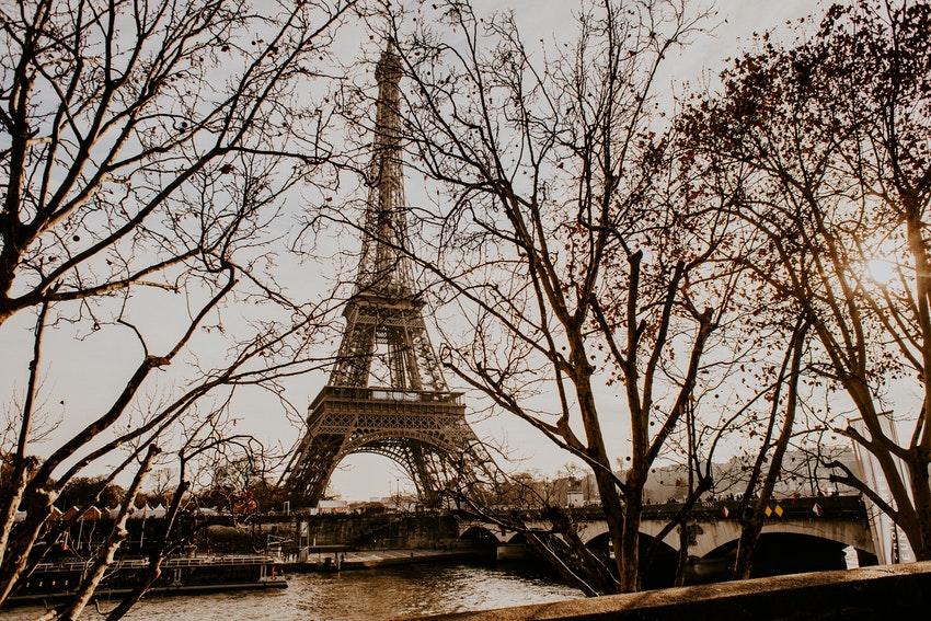 vue sur la tour eiffel avec arbres